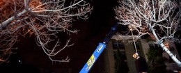'Iran crane execution' from the web at 'http://s2.freebeacon.com/up/2015/11/Iran-crane-execution-260x105.jpg'